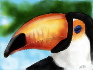 Toucan image