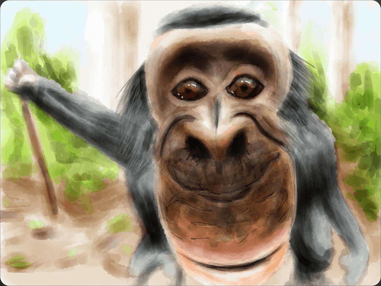 Bobo the Bonobo 08 image