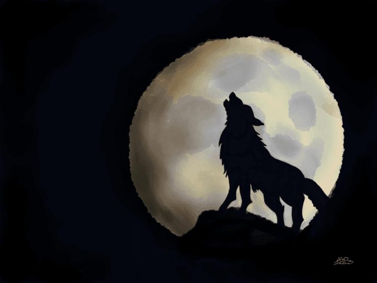 Howl image