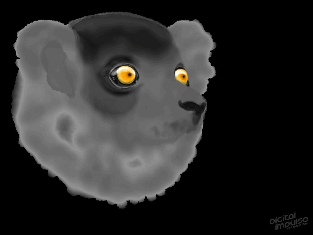 Black Lemur 001 Image