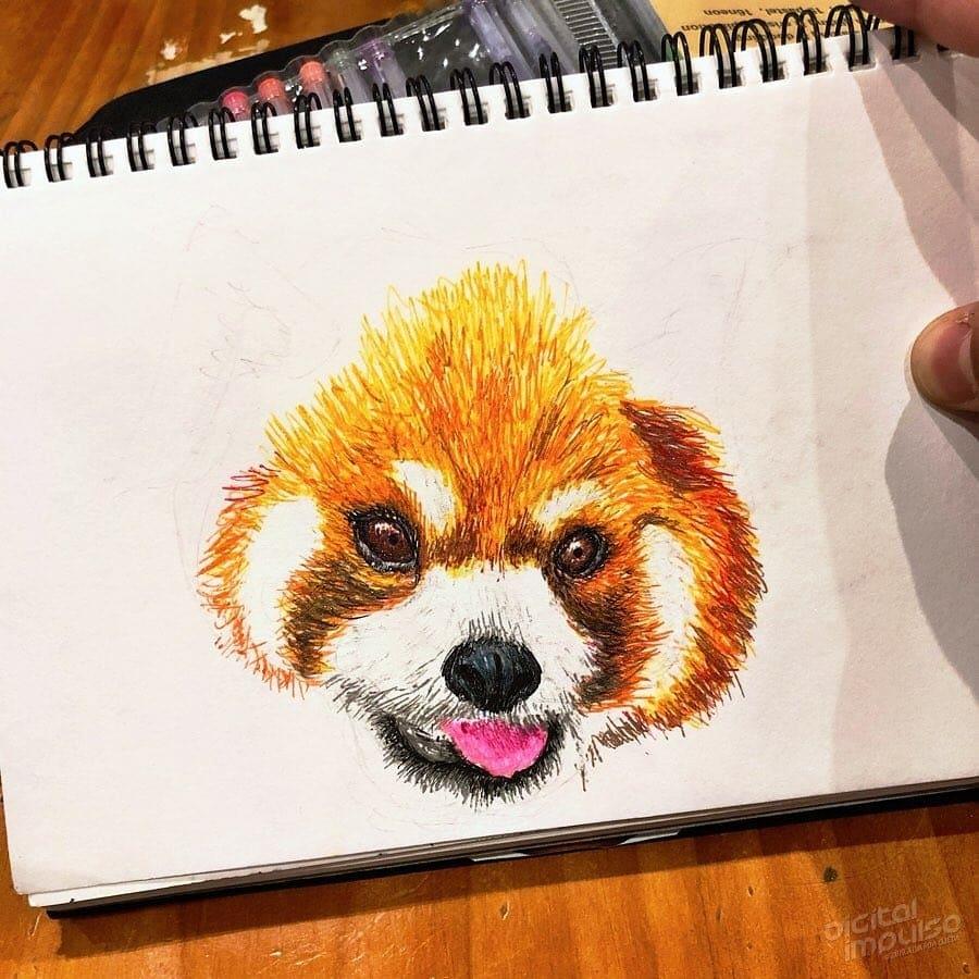 Red Panda 002 Image
