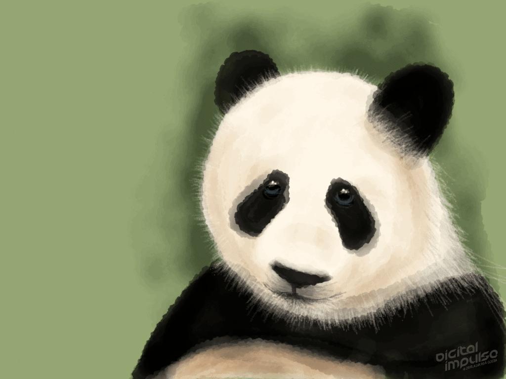 Sad Panda 005 Image