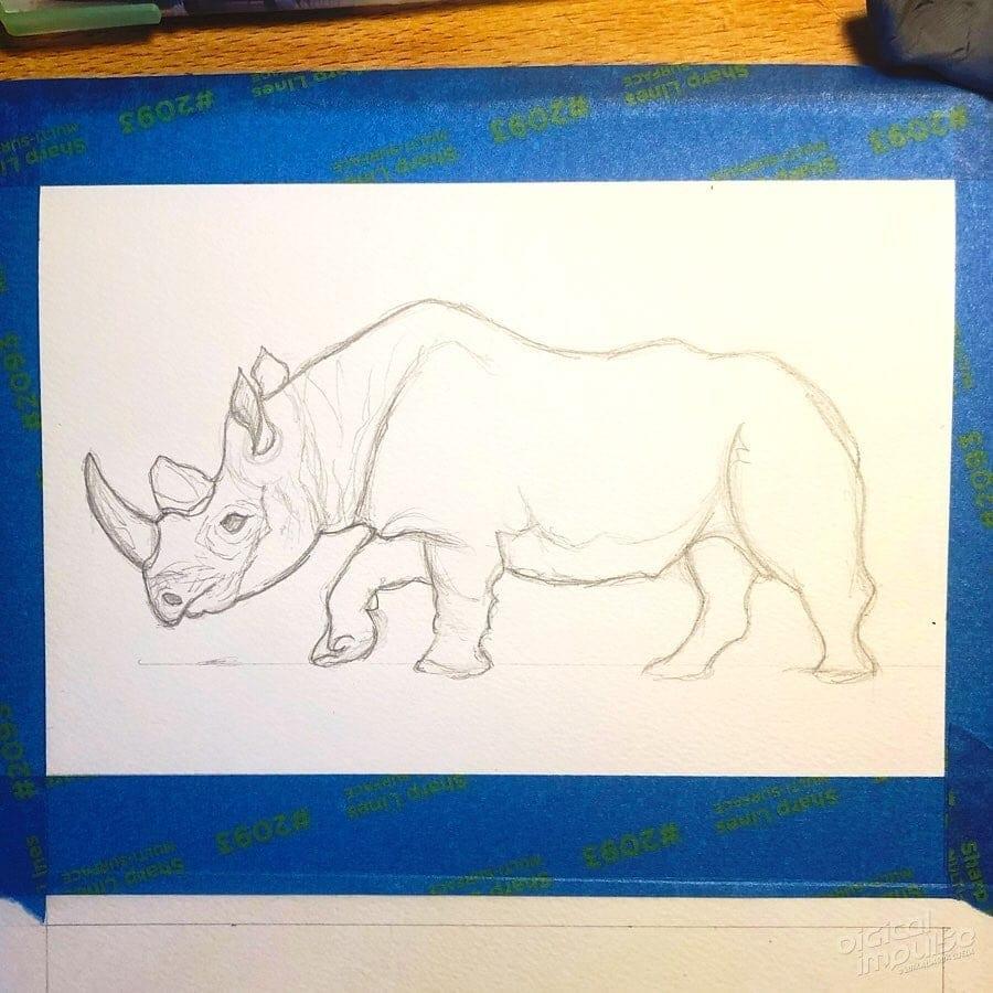 African Black Rhino 01 image