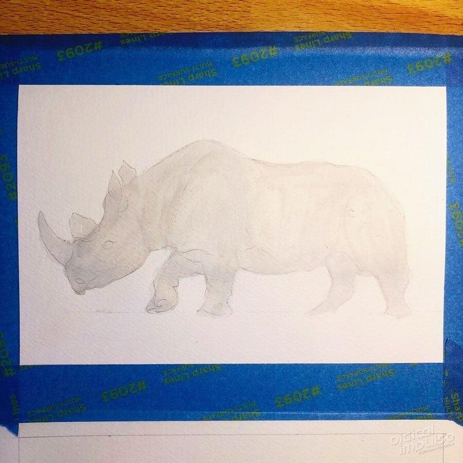 African Black Rhino 02 image