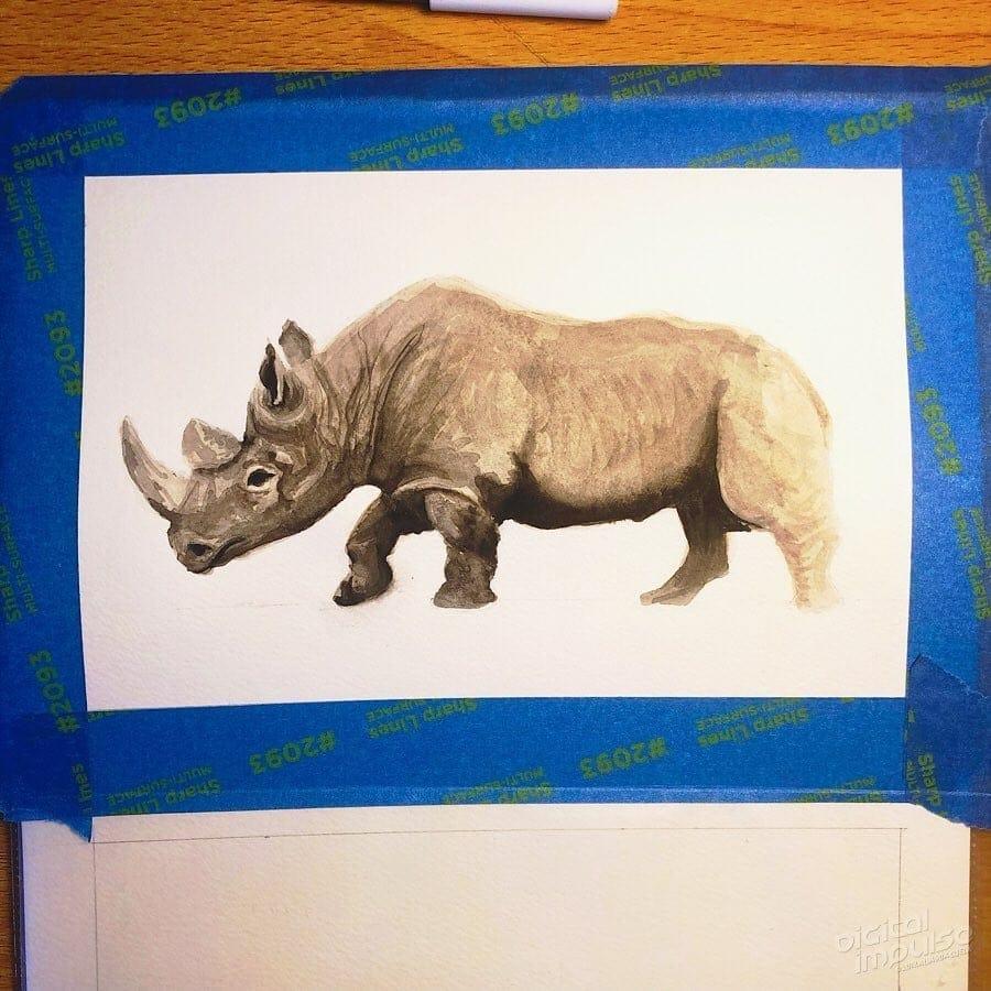 African Black Rhino 04 image