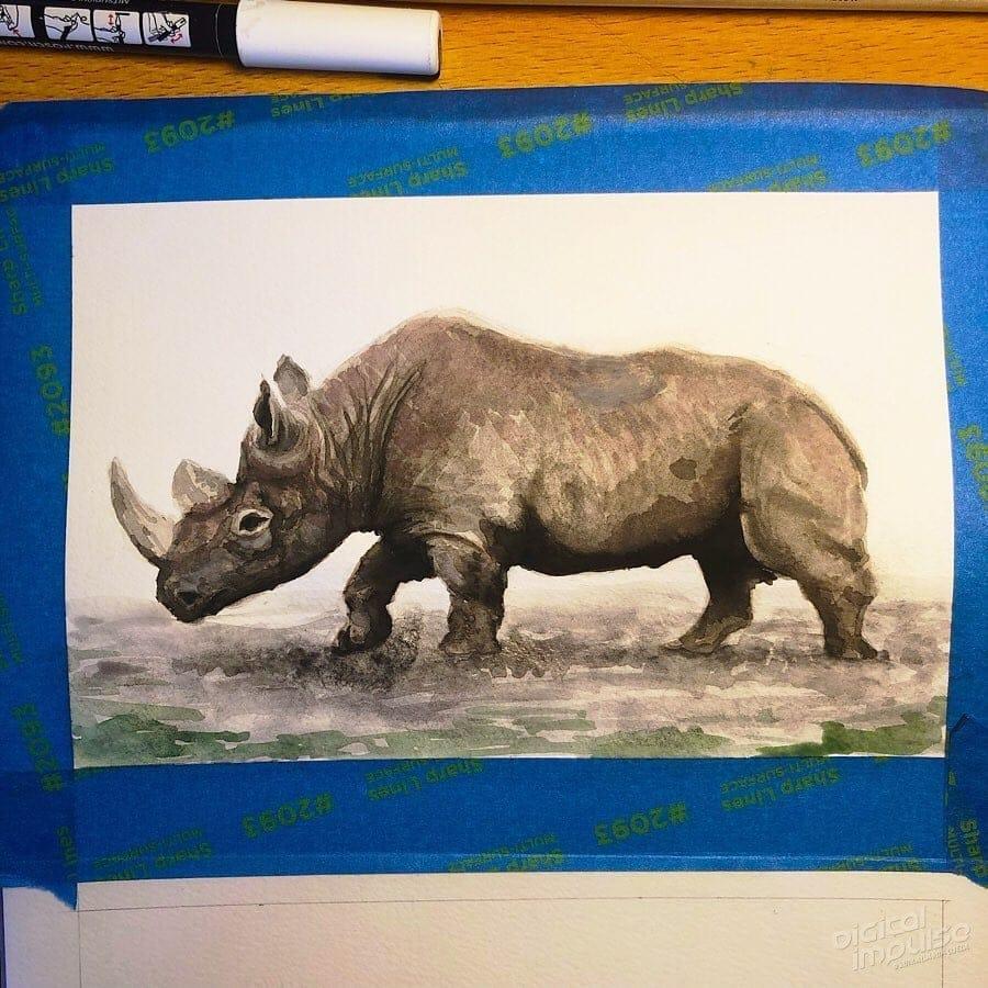 African Black Rhino 05 image