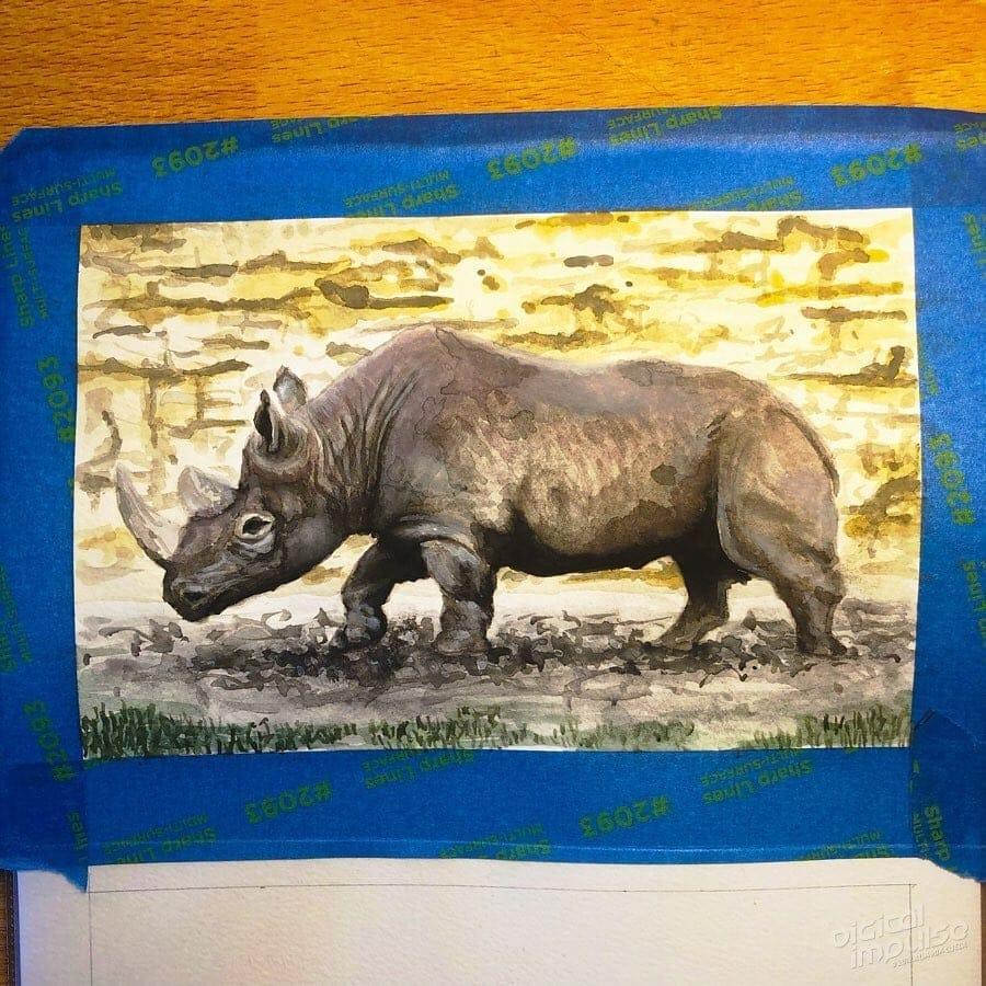 African Black Rhino 06 image