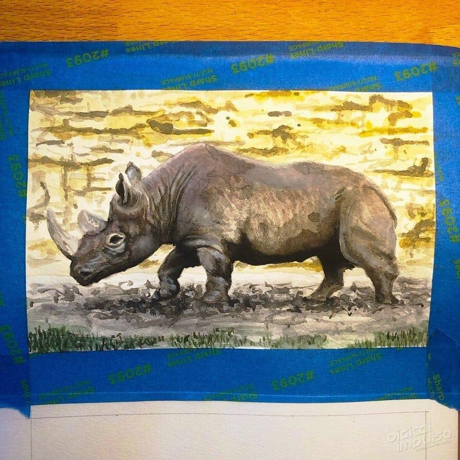 African Black Rhino 07 image