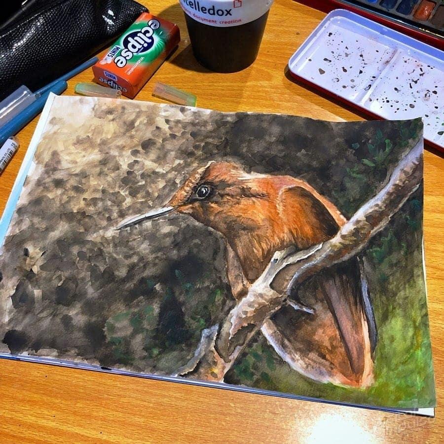 Firecrown Hummingbird 05 image