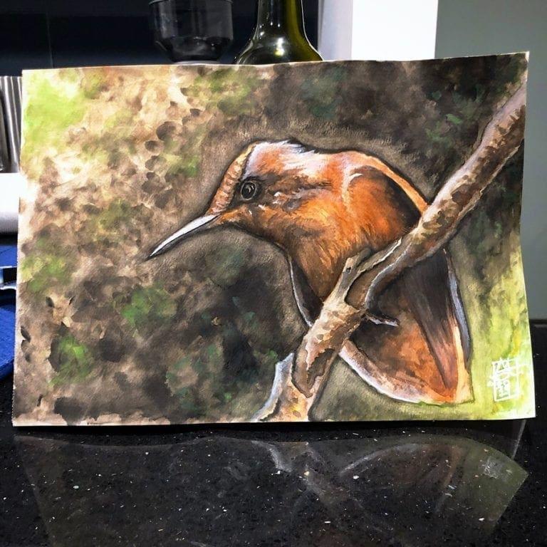 Firecrown Hummingbird 06 image