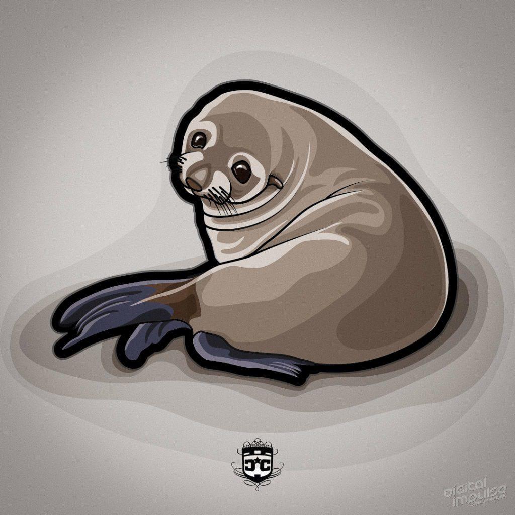 Fur Seal Pup image