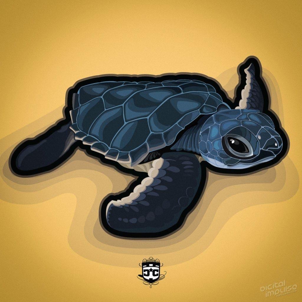 Turtle Hatchling image