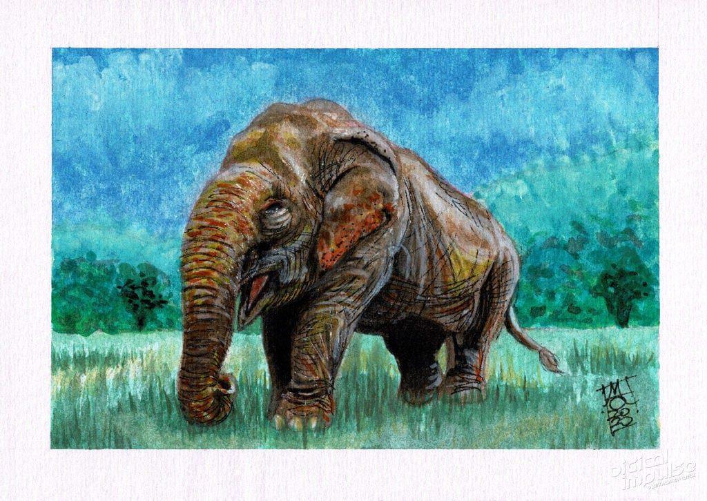 Asian Elephant Watercolor image