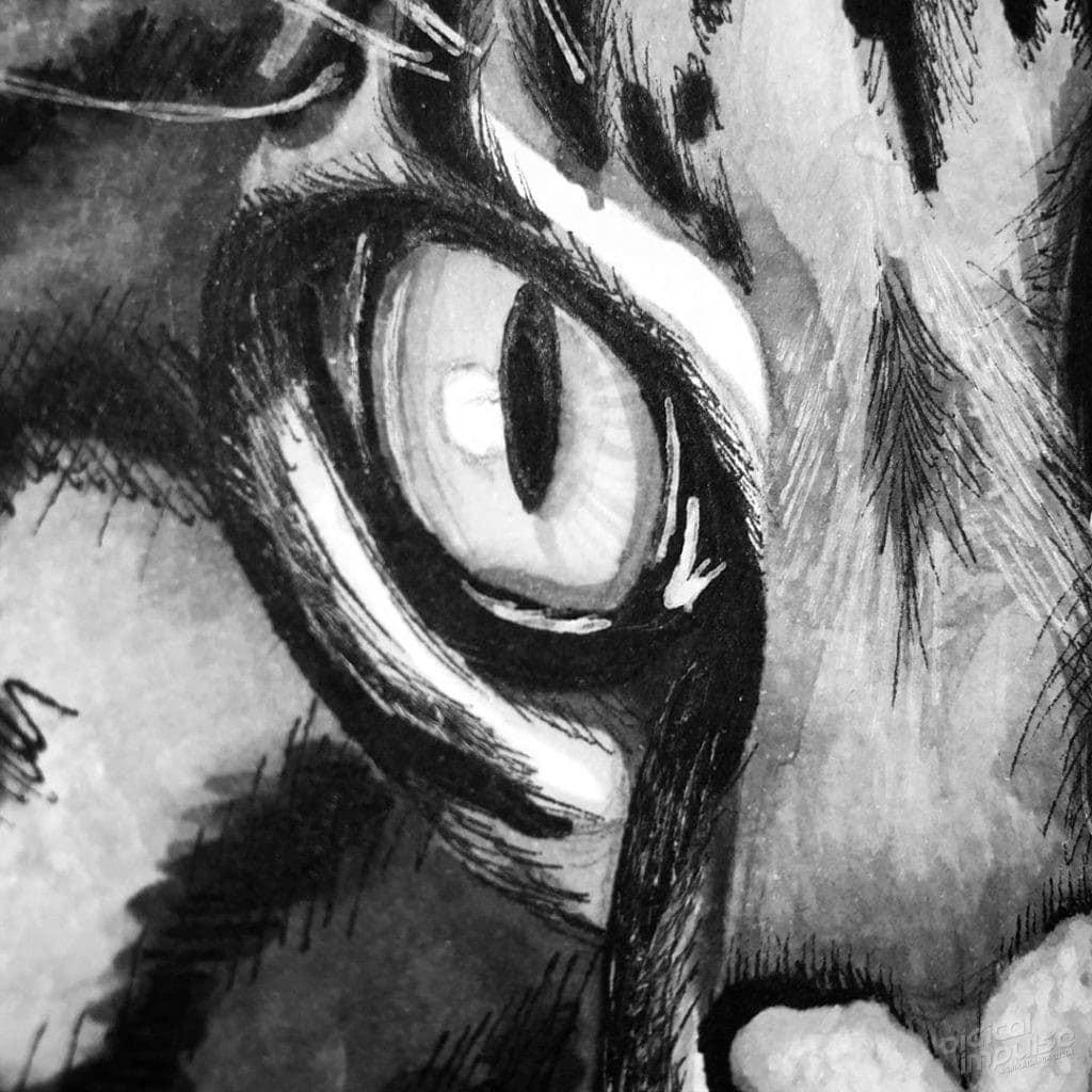 Ocelot (Leopardus pardalis) - 004 image