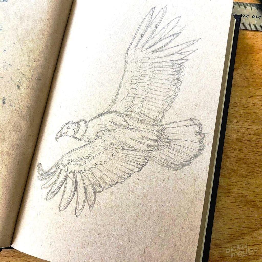 Condor in Flight - 05 Preview Image